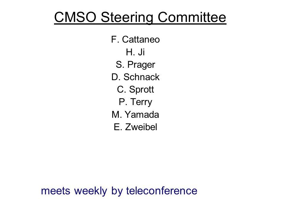 CMSO Steering Committee