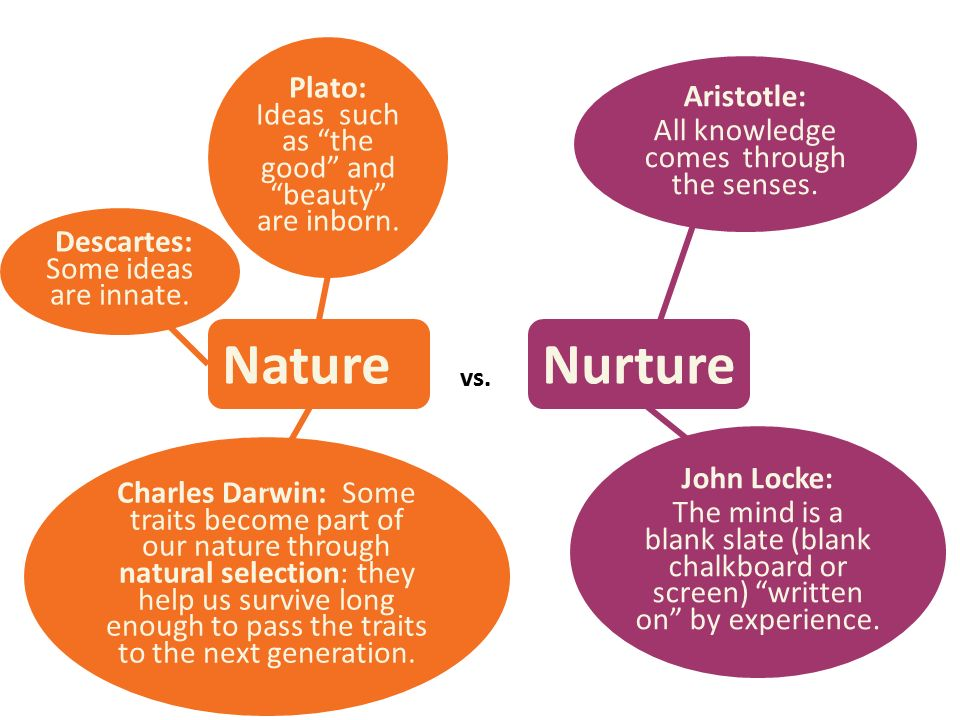 Nature Nurture Debate Essay