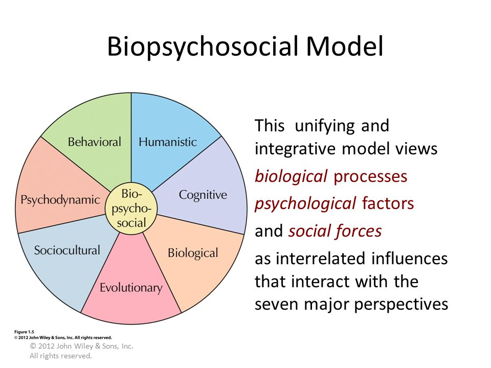 biological and social learning perspectives Integrate the behavioral and cognitive perspectives social learning theory, as developed by neal social learning perspective william g author: whuitt.