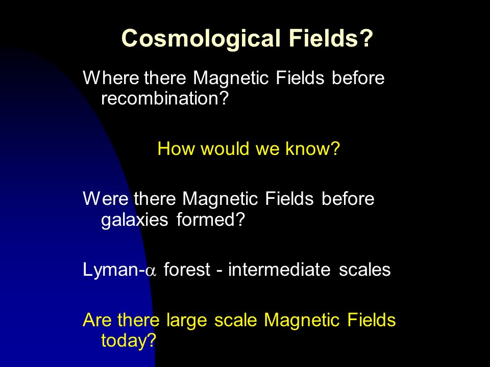 Cosmological Fields Where there Magnetic Fields before recombination