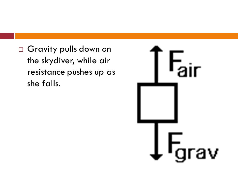 Gravity pulls down on the skydiver, while air resistance pushes up as she falls.