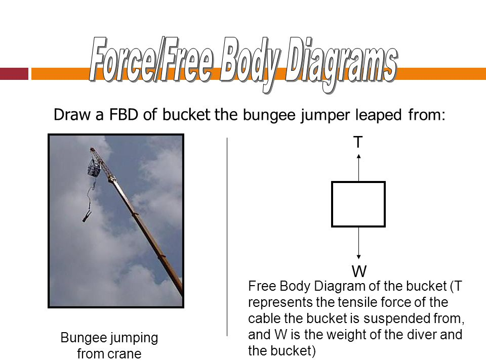 Force/Free Body Diagrams