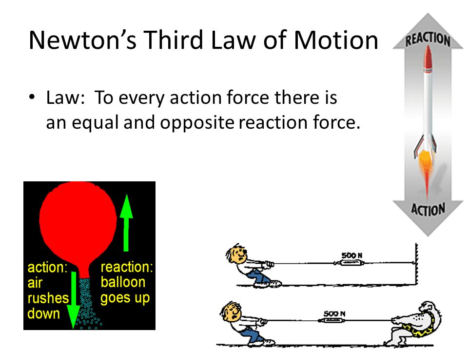 Newton's Third Law of Motion