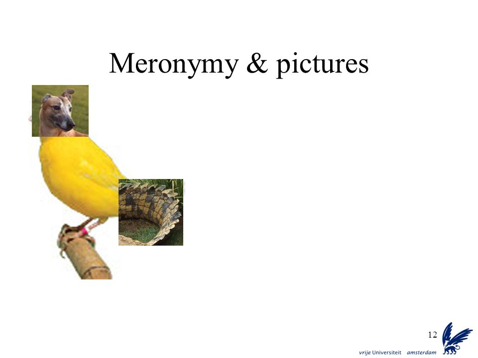 Meronymy & pictures
