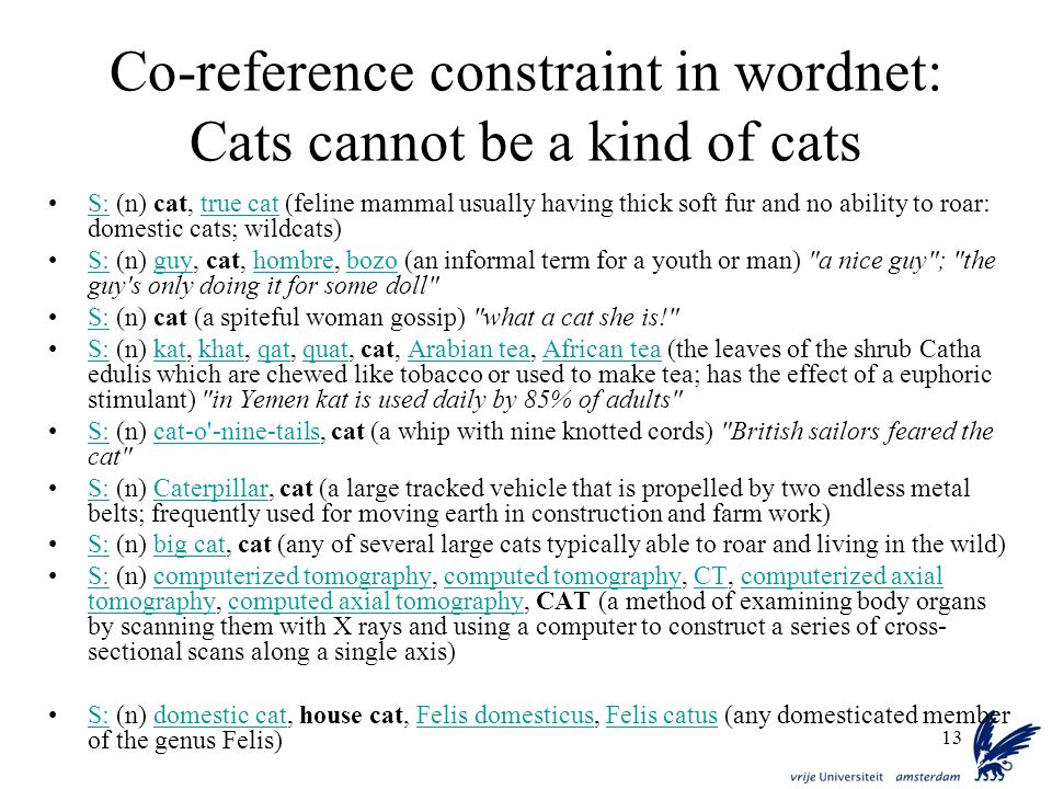 Co-reference constraint in wordnet: Cats cannot be a kind of cats