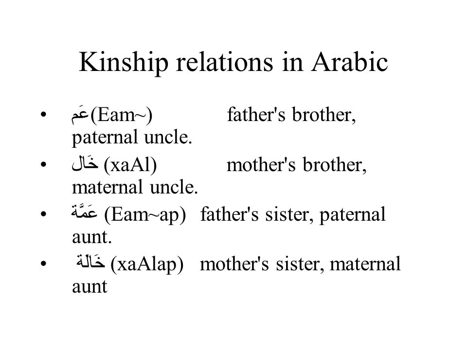 Kinship relations in Arabic