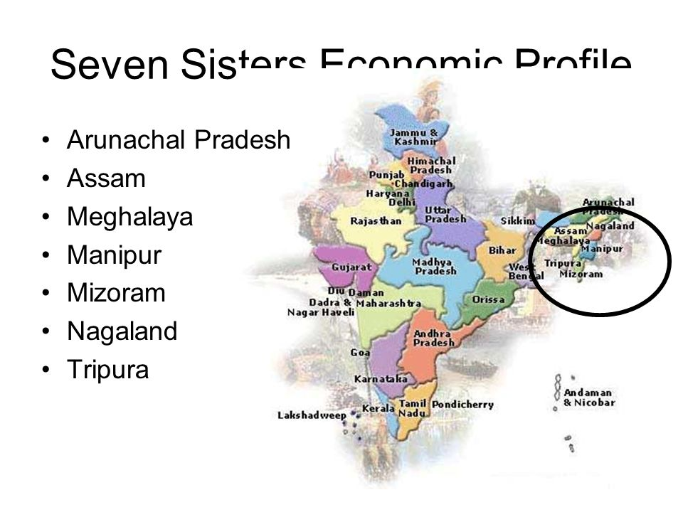 Seven Sisters Economic Profile