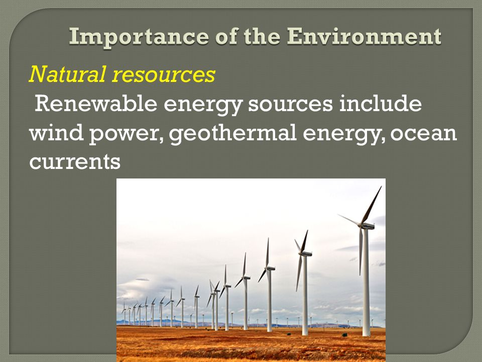 importance of energy in environment Defining environmental stewardship contamination of the environment by chemicals or other materials through: two important definitions -energy conservation & energy efficiency energy efficiency - the efficient conversion and use of energy.