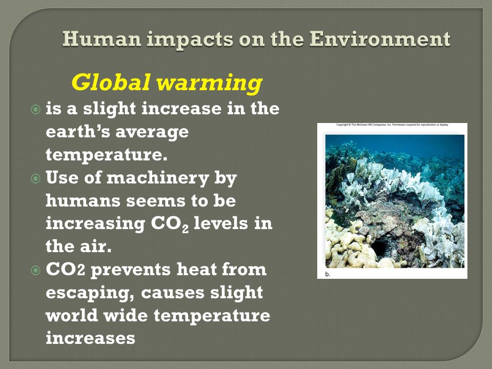 the causes of global warming and its impacts on humanity and environment Ecosystem impacts with global warming on the increase  the ongoing accumulation of greenhouse gasses causes increasing global warming  and play down its impacts.