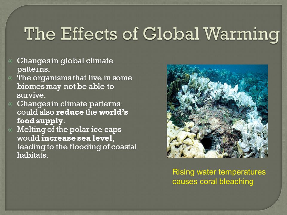 what are the effects of global