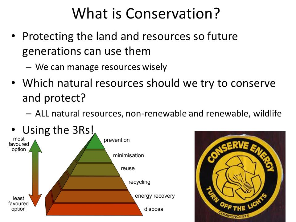 Conservation of natural resources soil wildlife and for What is soil resources