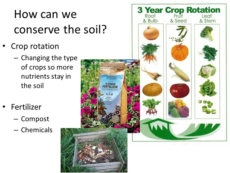Conservation of natural resources soil wildlife and for Natural resources soil information