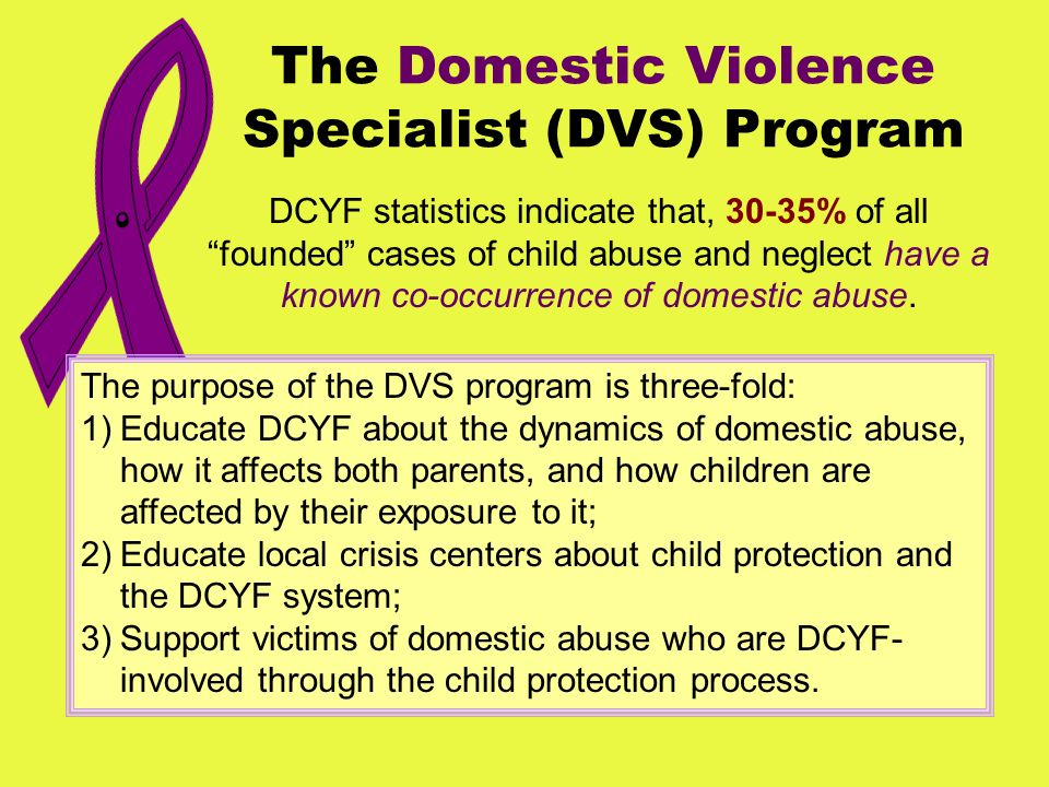 The Domestic Violence Specialist (DVS) Program