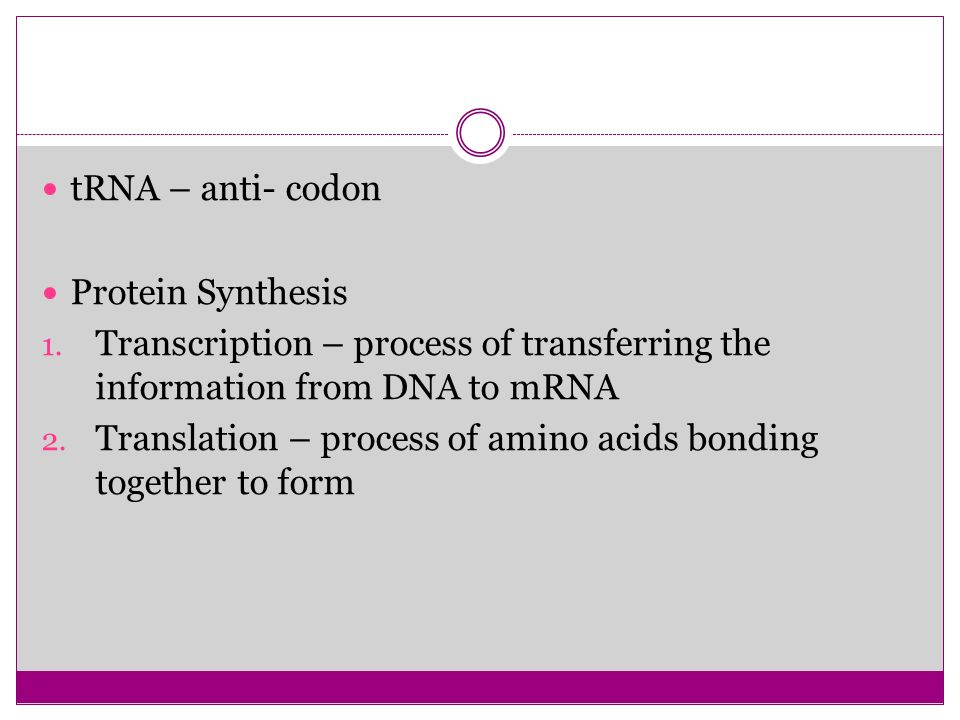 tRNA – anti- codon Protein Synthesis. Transcription – process of transferring the information from DNA to mRNA.