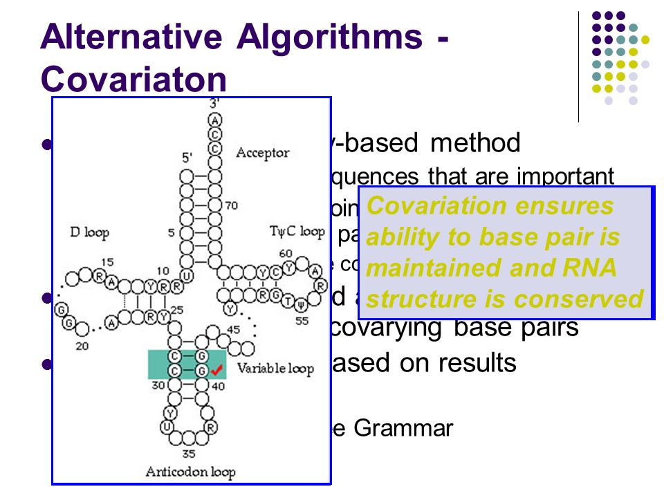 Alternative Algorithms - Covariaton