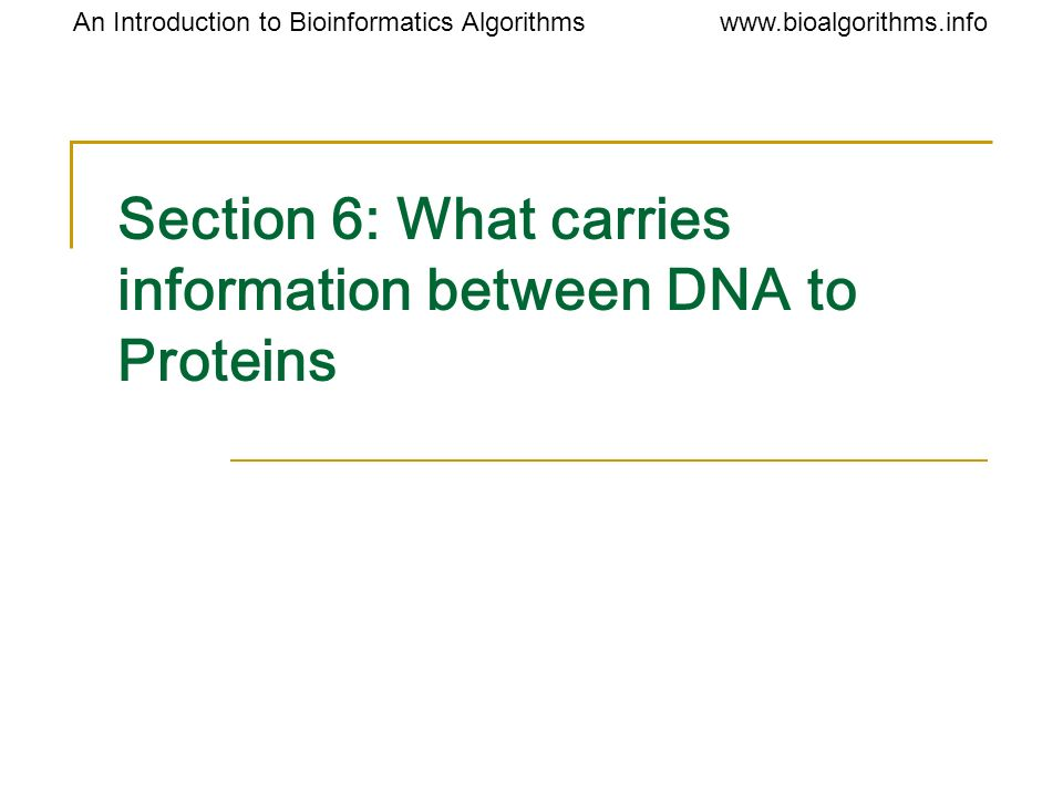 Section 6: What carries information between DNA to Proteins