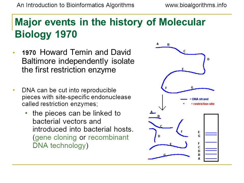 Major events in the history of Molecular Biology 1970