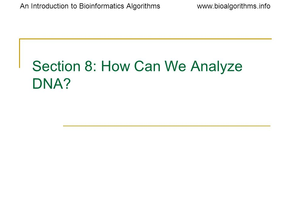 Section 8: How Can We Analyze DNA