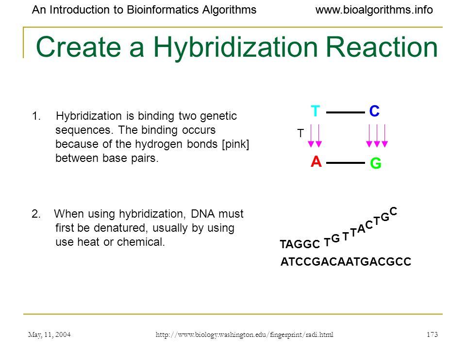 Create a Hybridization Reaction