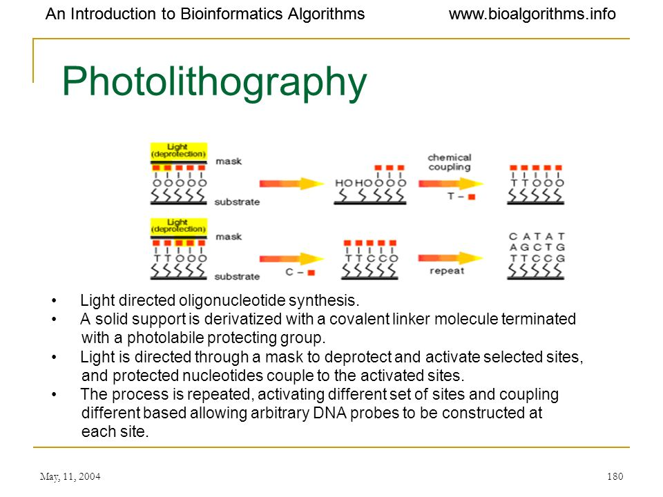 Photolithography An Introduction to Bioinformatics Algorithms