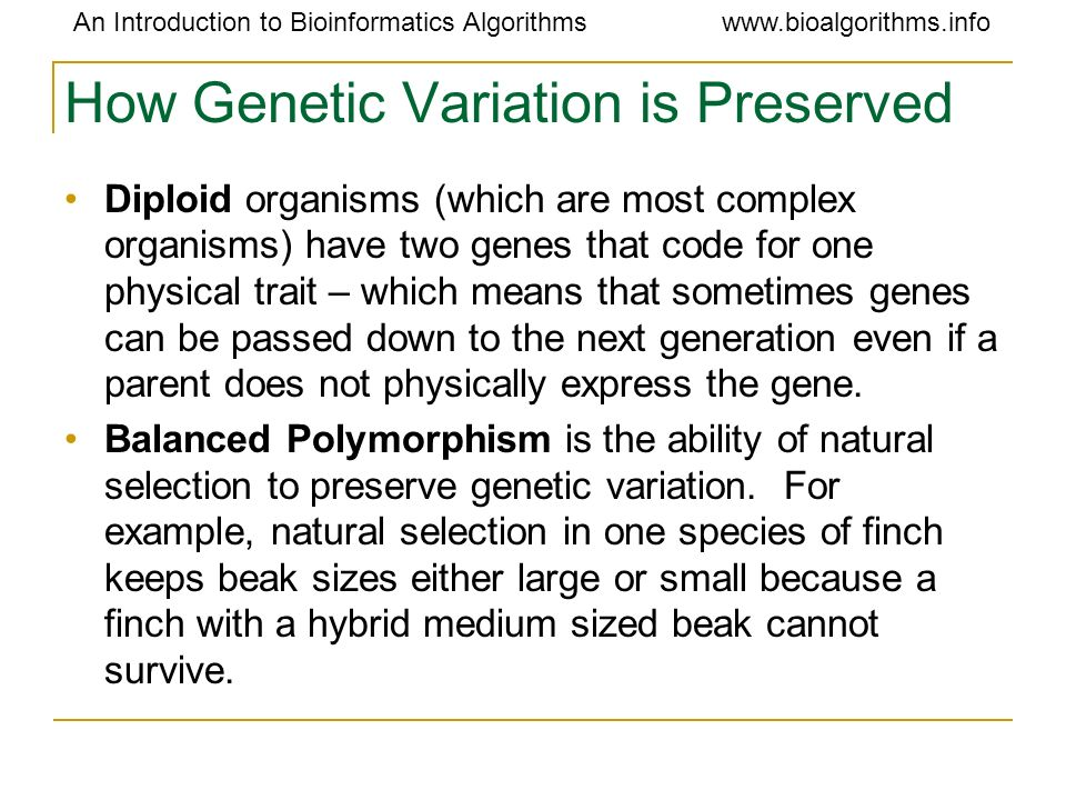 How Genetic Variation is Preserved