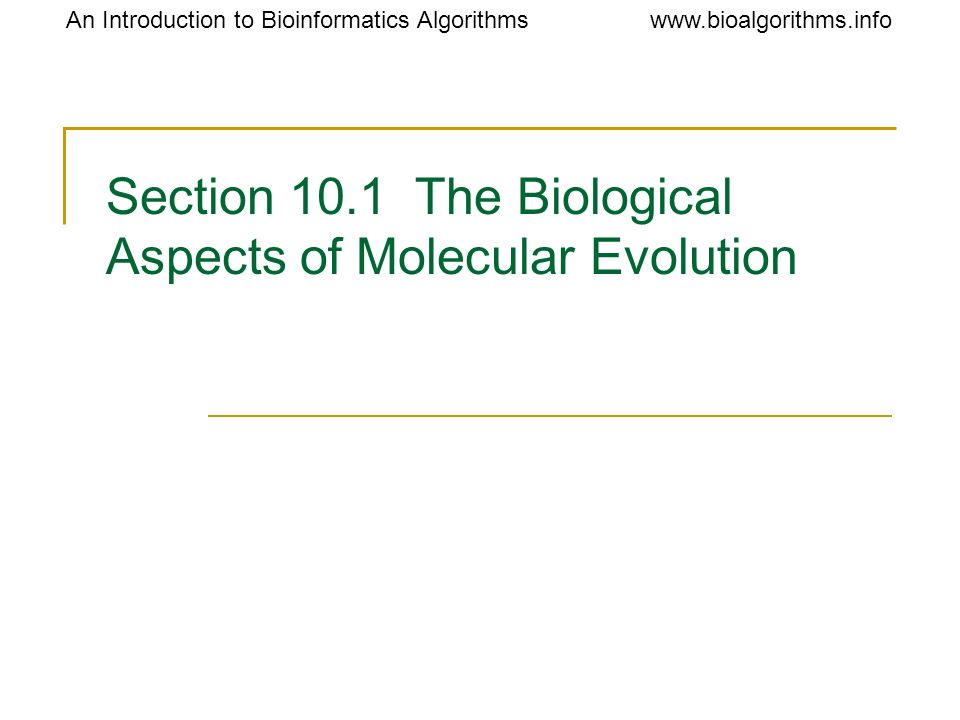 Section 10.1 The Biological Aspects of Molecular Evolution
