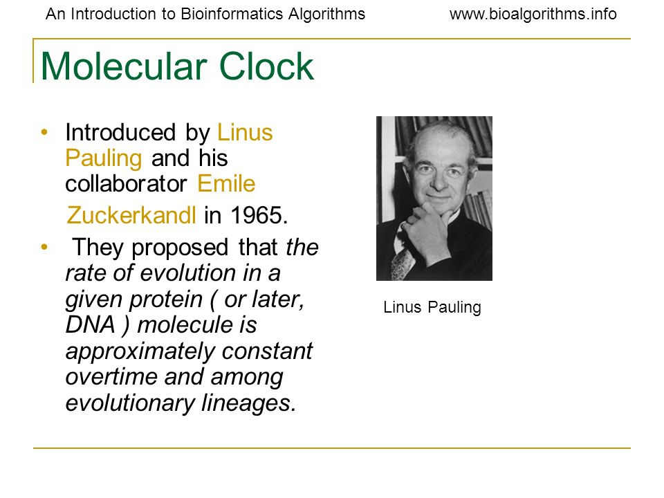 Molecular Clock Introduced by Linus Pauling and his collaborator Emile