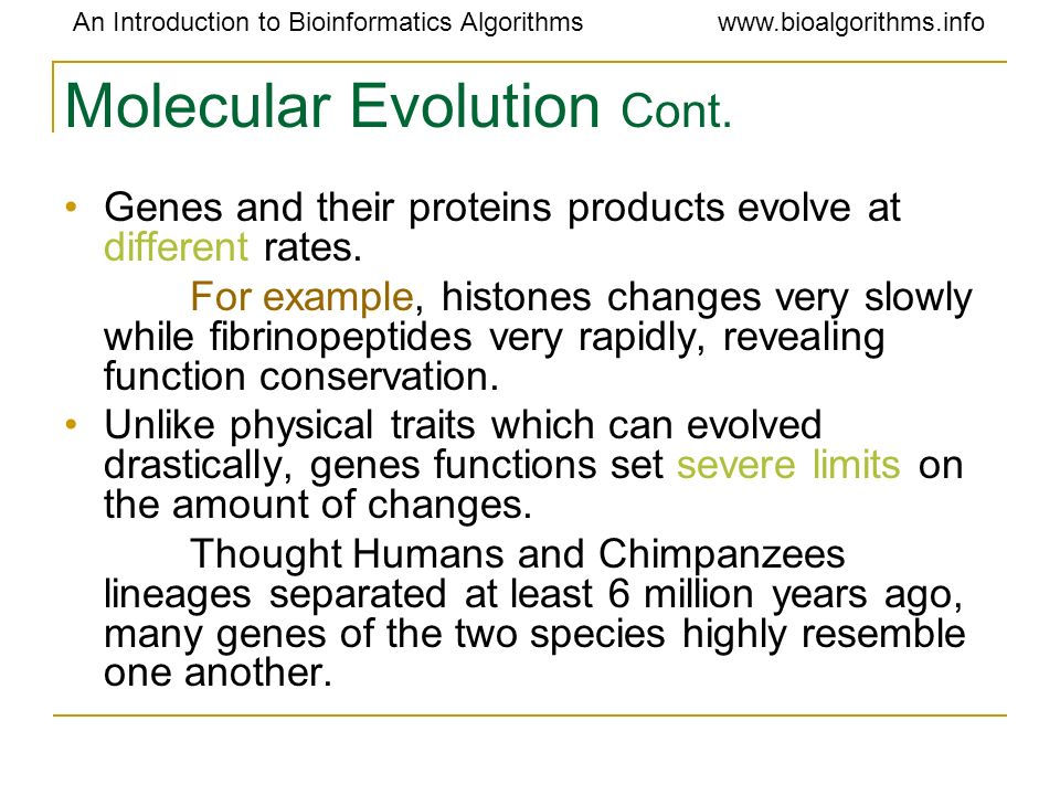 Molecular Evolution Cont.