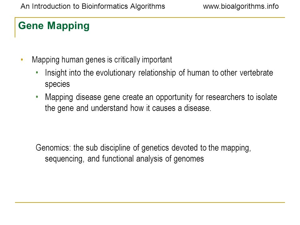 Gene Mapping Mapping human genes is critically important. Insight into the evolutionary relationship of human to other vertebrate species.