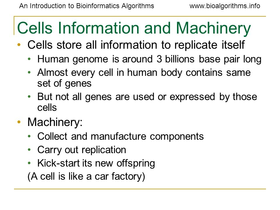 Cells Information and Machinery
