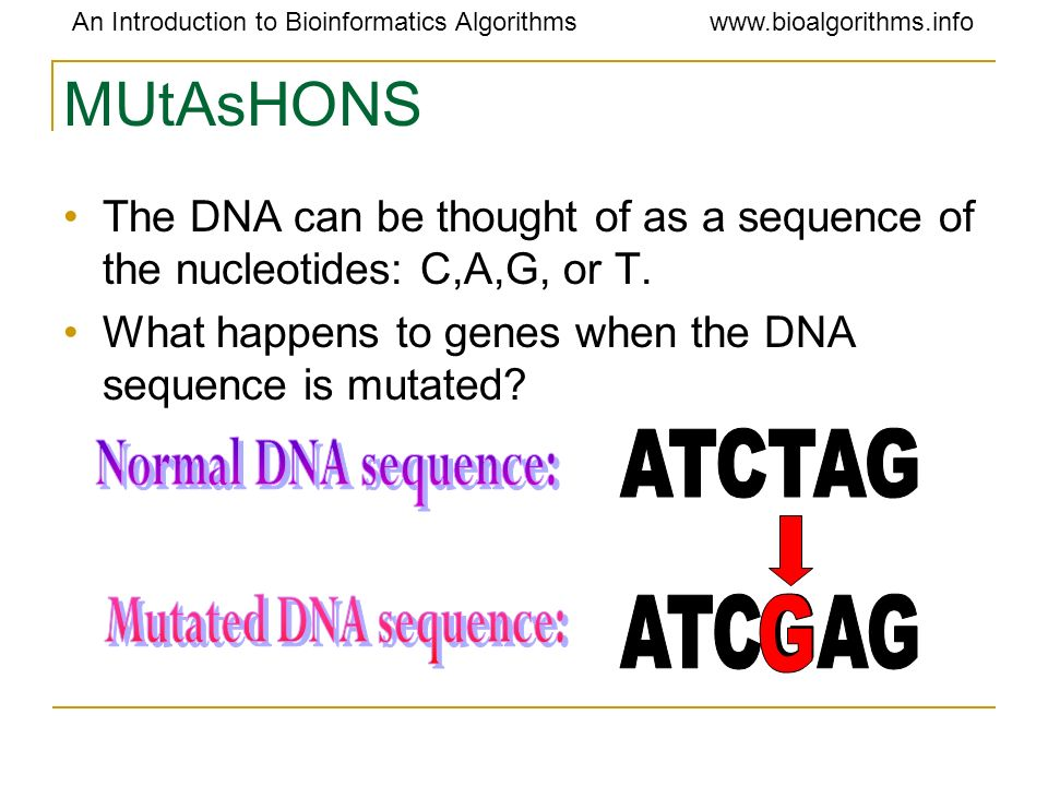 MUtAsHONS ATCTAG Normal DNA sequence: Mutated DNA sequence: ATCGAG G