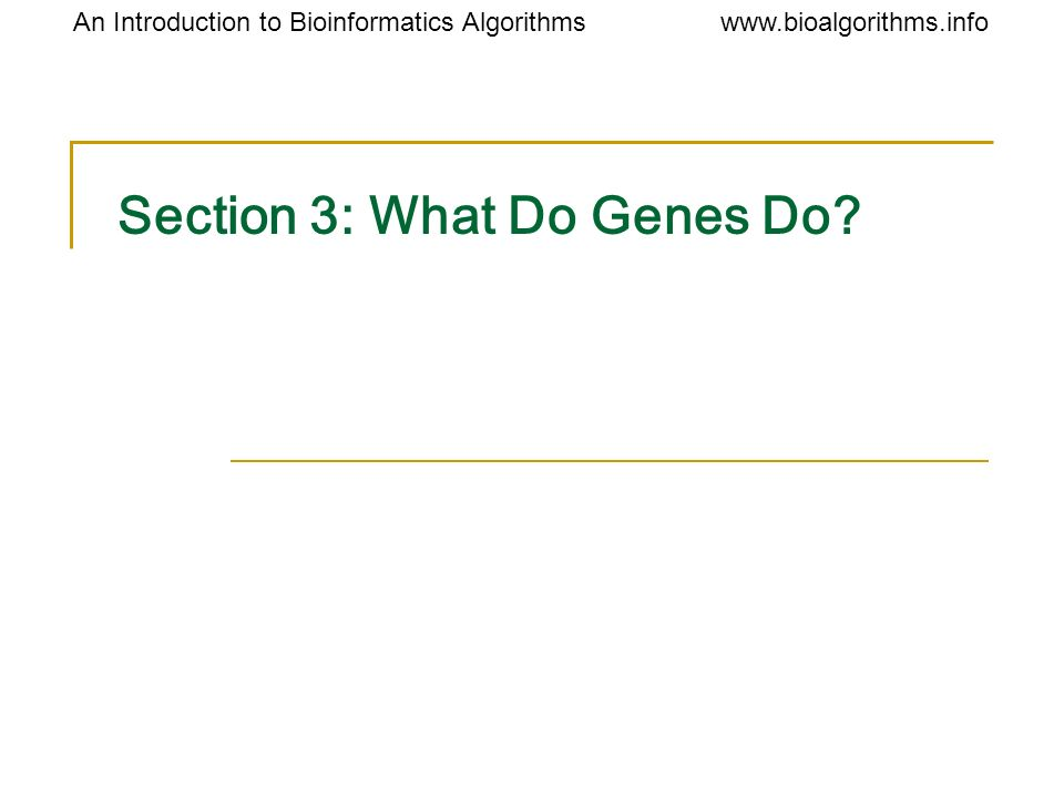 Section 3: What Do Genes Do