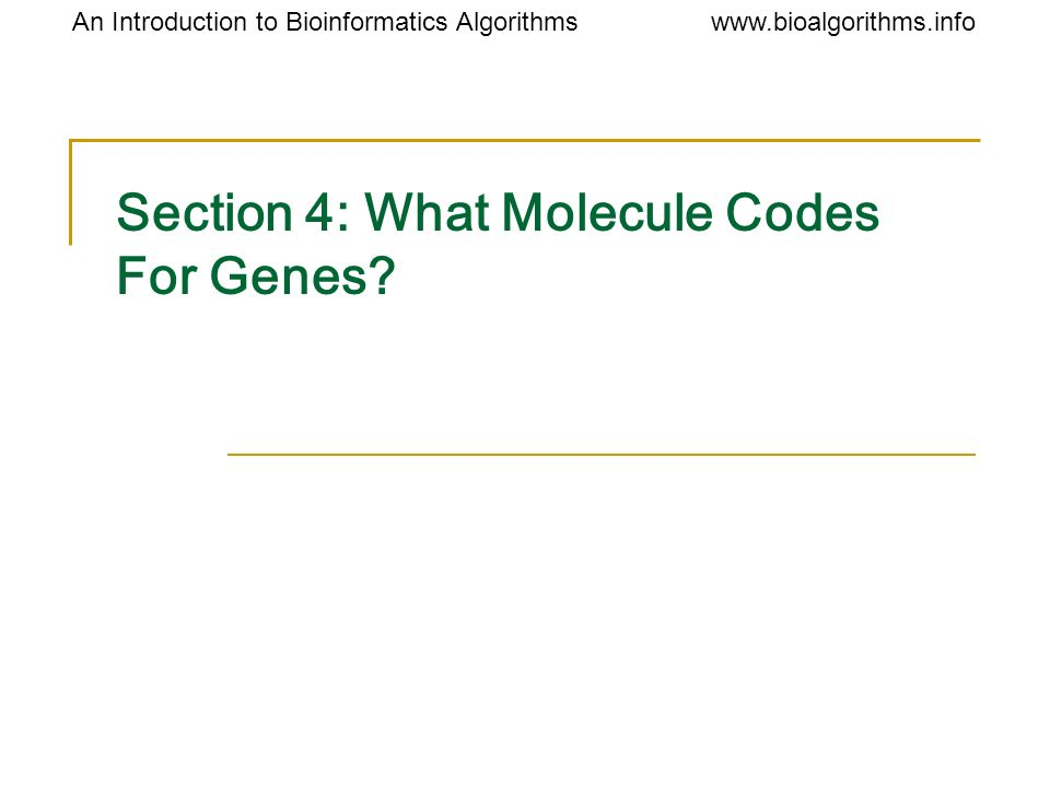 Section 4: What Molecule Codes For Genes