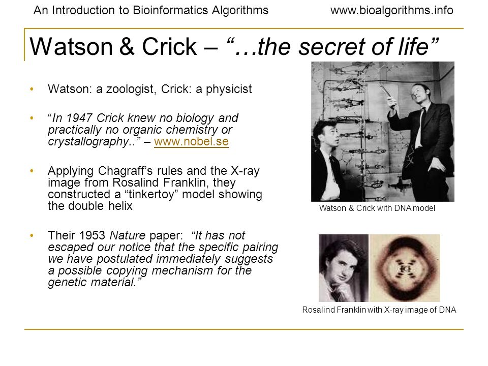 Watson & Crick – …the secret of life