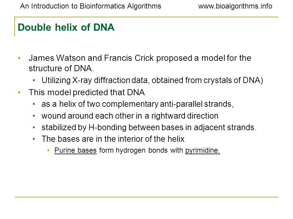 Double helix of DNA James Watson and Francis Crick proposed a model for the structure of DNA.