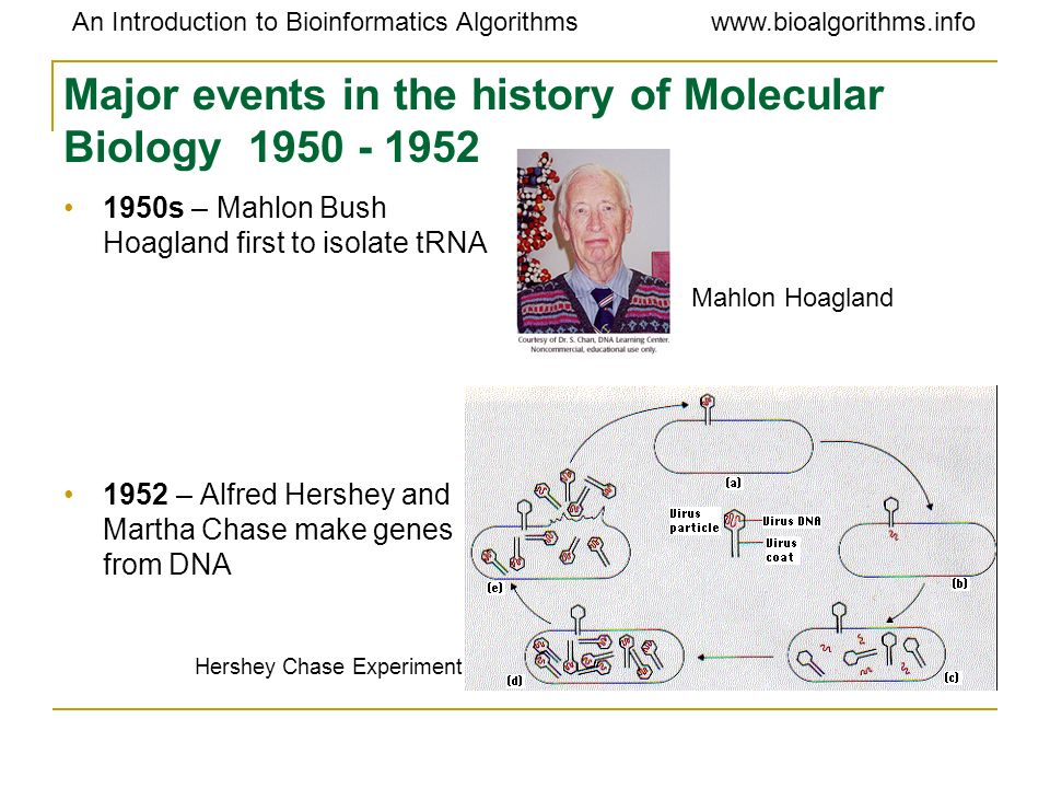 Major events in the history of Molecular Biology 1950 - 1952