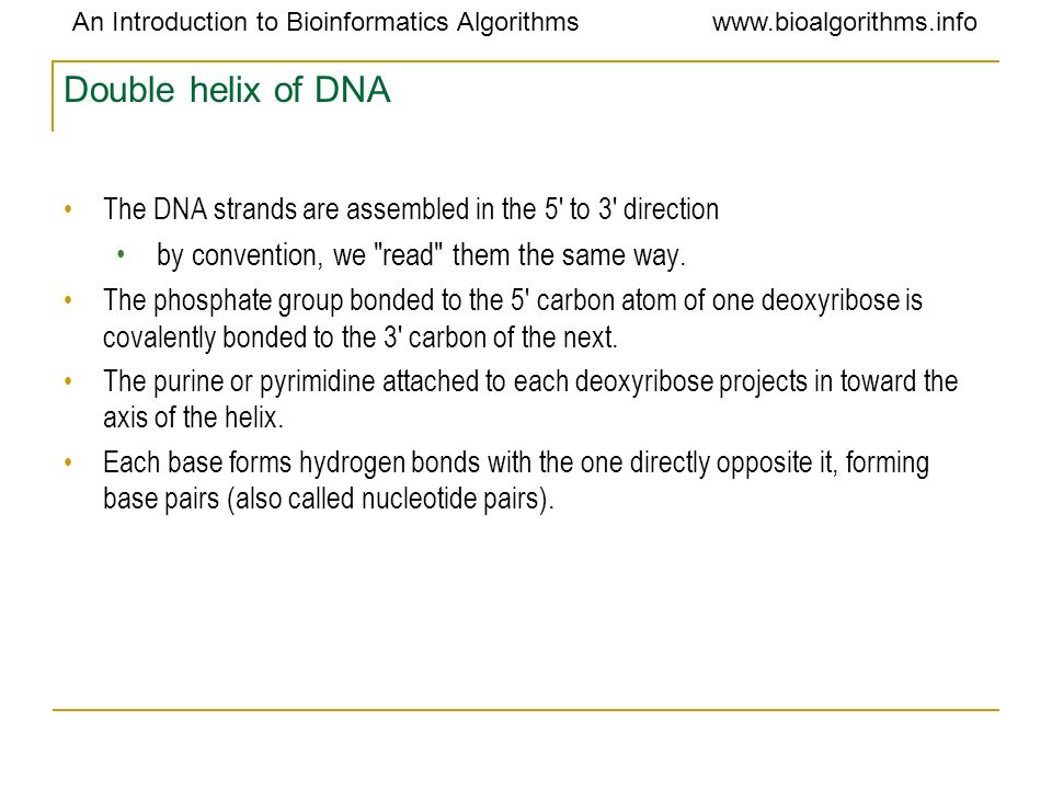 Double helix of DNA by convention, we read them the same way.