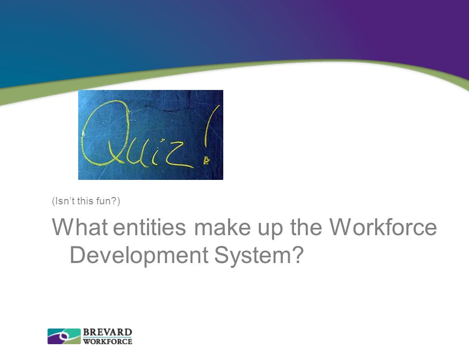 What entities make up the Workforce Development System