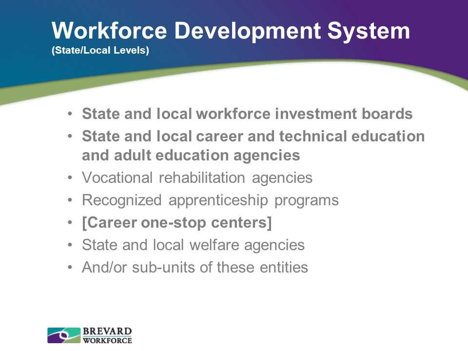 Workforce Development System (State/Local Levels)