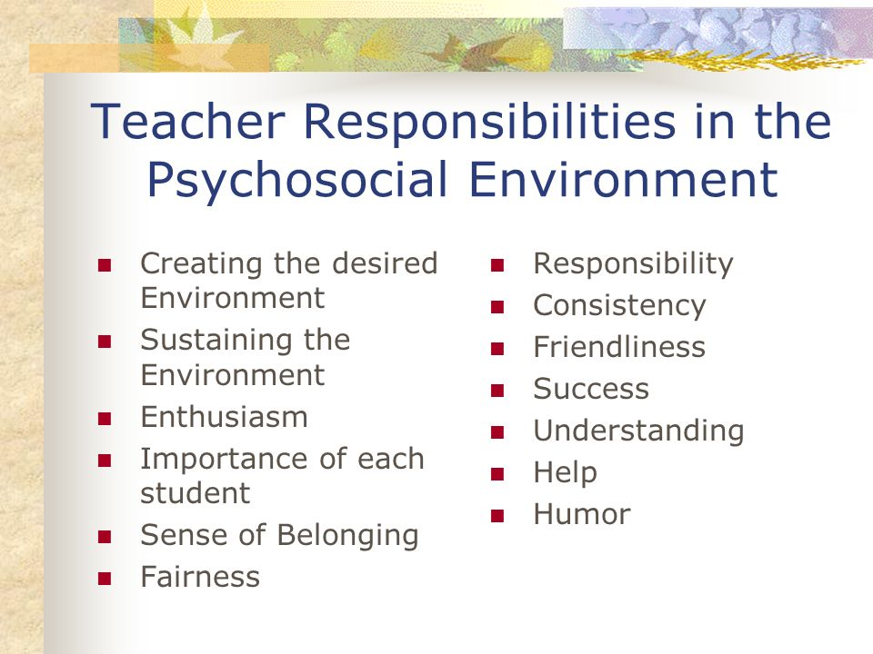 Teacher Responsibilities in the Psychosocial Environment