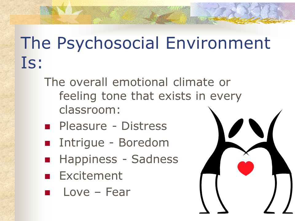 The Psychosocial Environment Is: