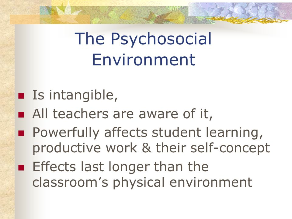 The Psychosocial Environment