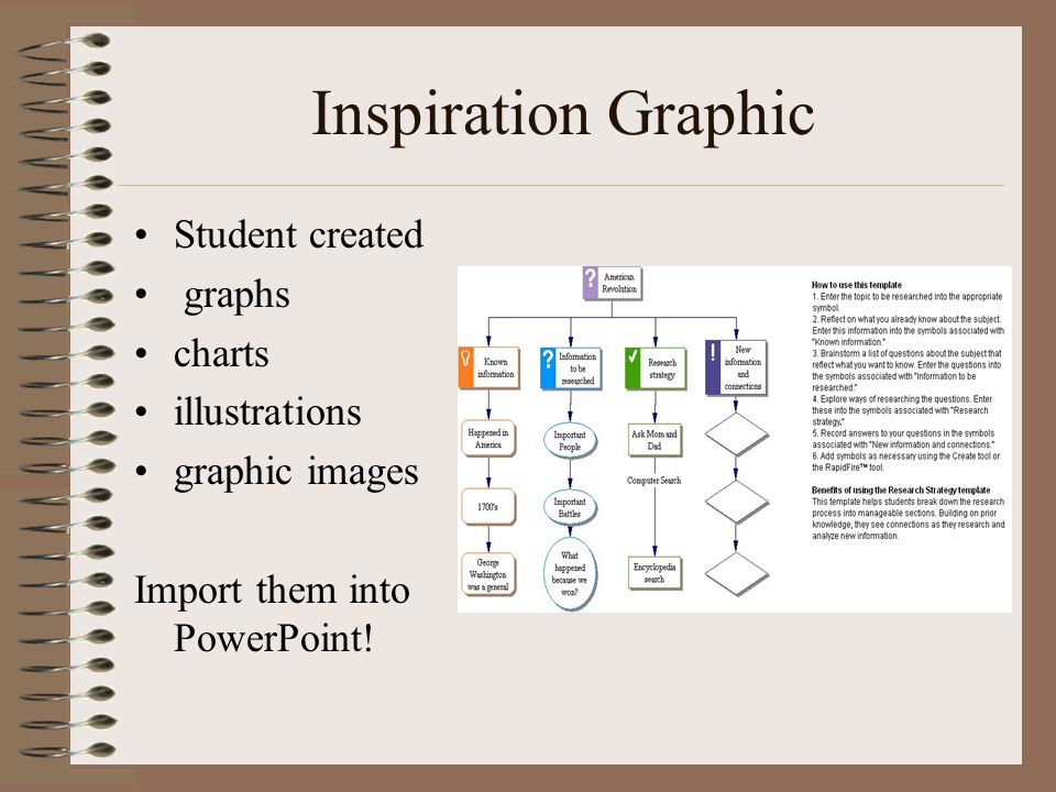 Inspiration Graphic Student created graphs charts illustrations