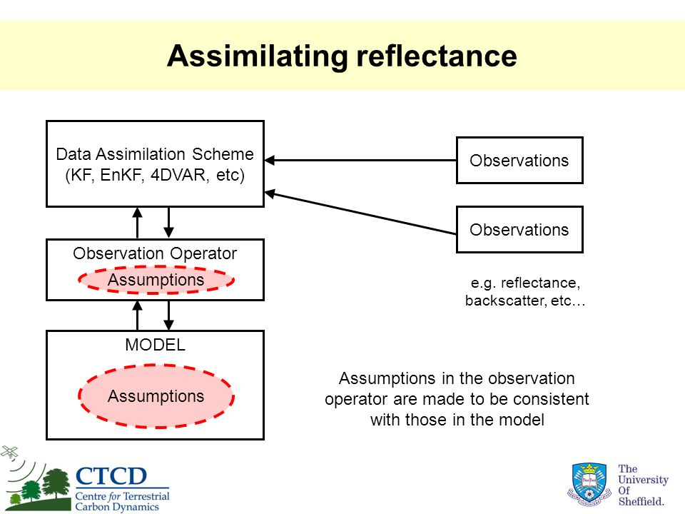 Assimilating reflectance