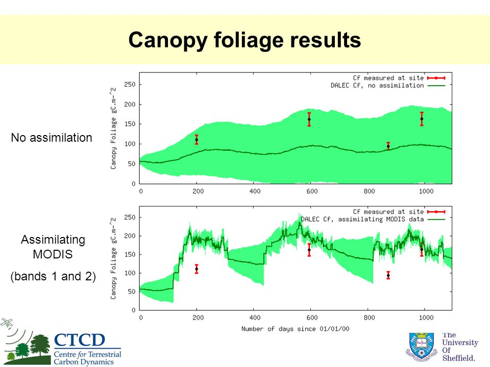 Canopy foliage results