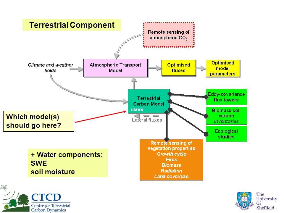 Terrestrial Component