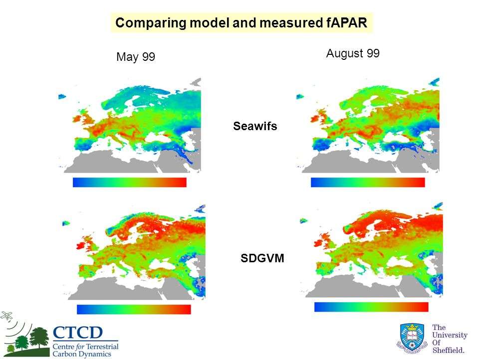 Comparing model and measured fAPAR