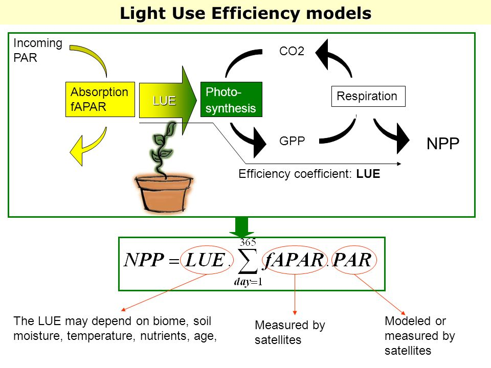 Light Use Efficiency models