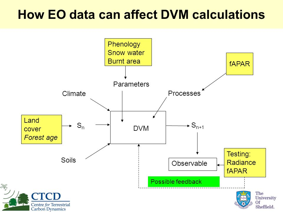 How EO data can affect DVM calculations