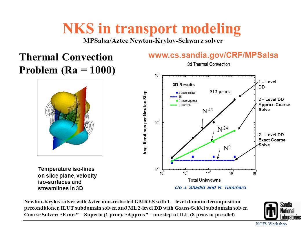 NKS in transport modeling